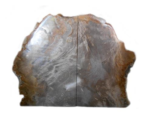 Petrified Wood Bookend#BKN149