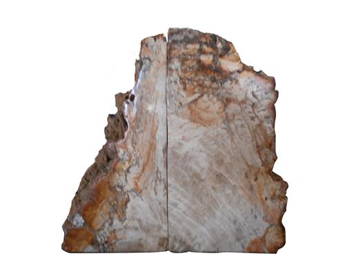Petrified Wood Bookend#BKN169
