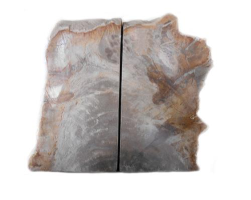 Petrified Wood Bookend#BKN173