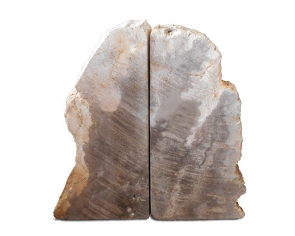 Petrified Wood Bookend#BKN179