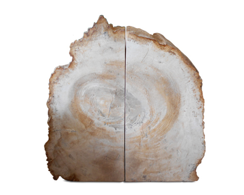 Petrified Wood Bookend#BKN181