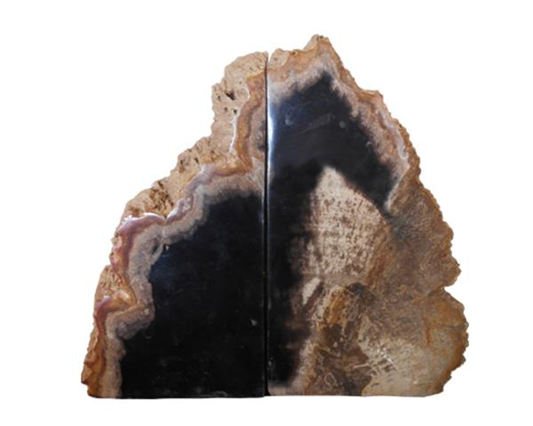 Petrified Wood Bookend#BKN198