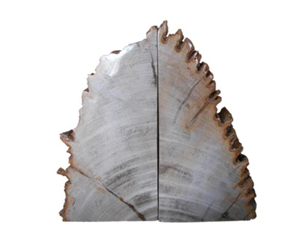 Petrified Wood Bookend#BKN220