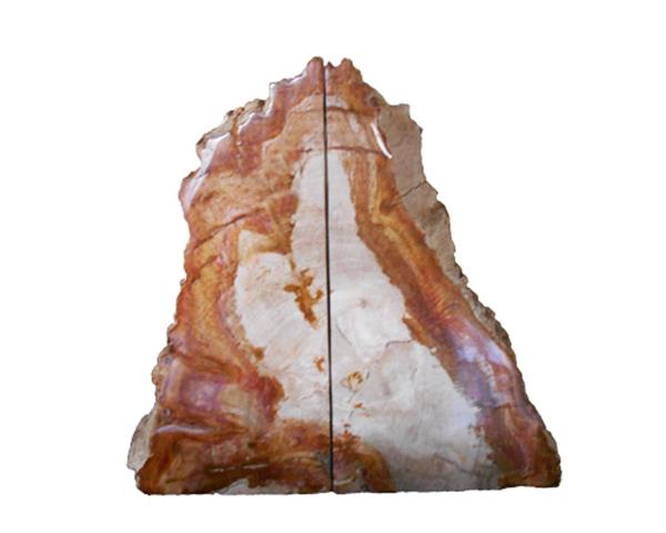 Petrified Wood Bookend#BKN239