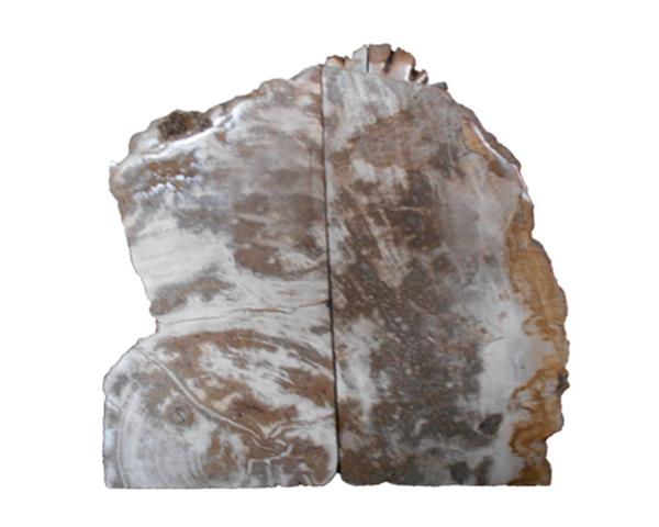 Petrified Wood Bookend#BKN241