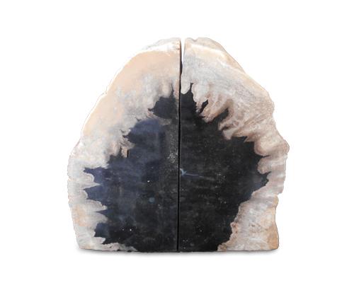 Petrified Wood Bookend#BKN282