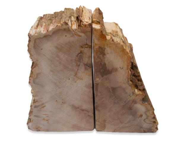 Petrified Wood Bookend#BKN342