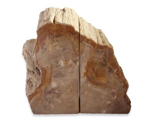 Petrified Wood Bookend#BKN399