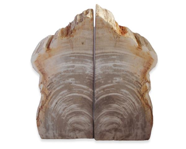 Petrified Wood Bookend#BKN401