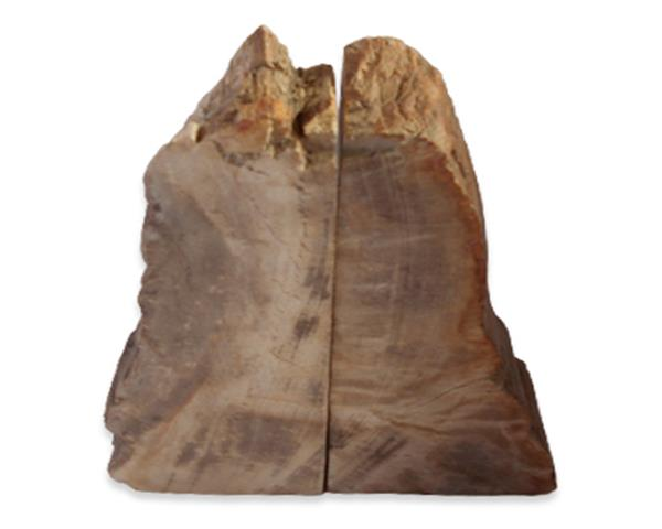 Petrified Wood Bookend#BKN421