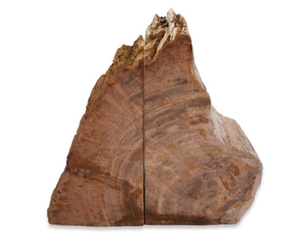 Petrified Wood Bookend#BKN422