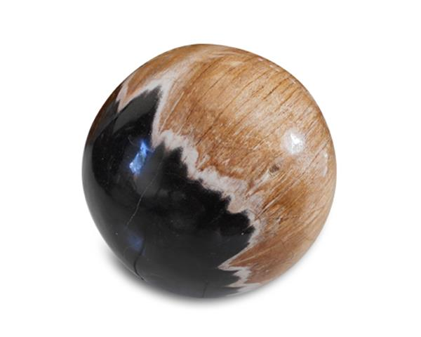 Petrified Wood Ball#BL38
