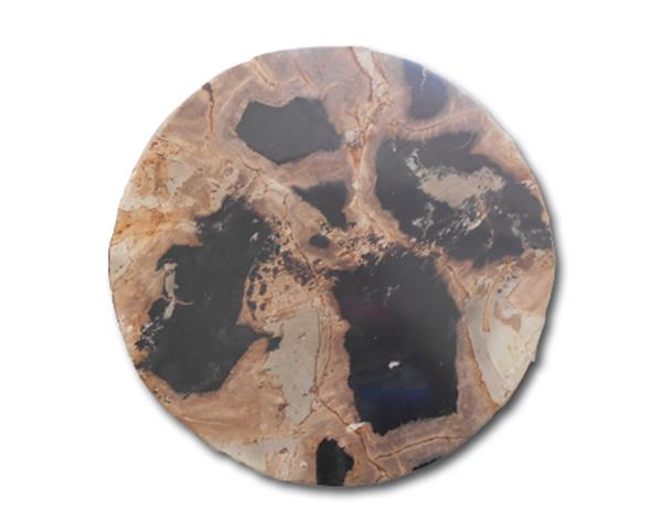 Petrified Wood Round Slab#KN76