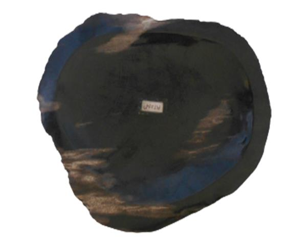 Petrified Wood Plate Extra Small Size#PLT294
