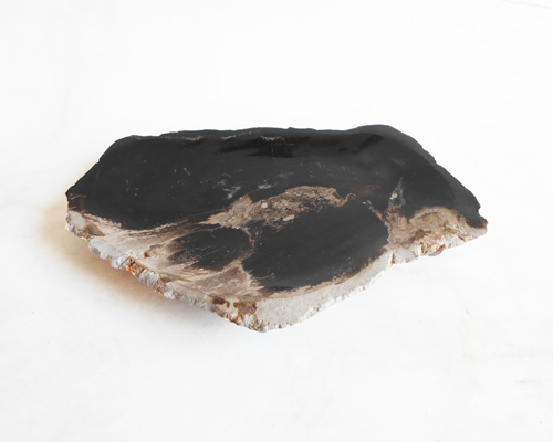 Petrified Wood Plate Extra Small Size#PLT221