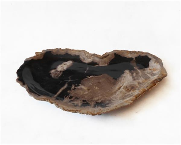 Petrified Wood Plate Medium Size#PLT261