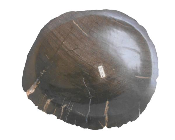 Petrified Wood Plate Small Size#PLT332