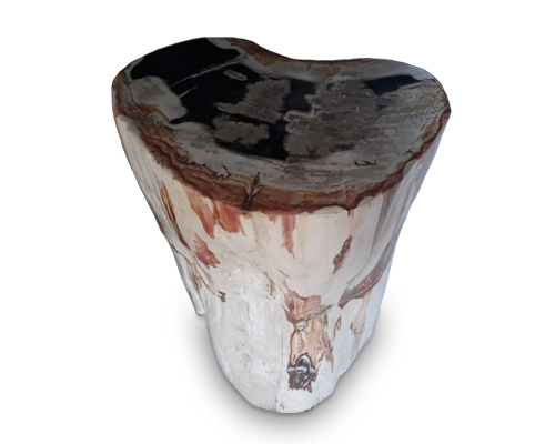 Petrified Wood Round Stool Full Polish#SRFP153