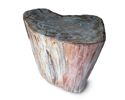 Petrified Wood Round Stool Full Polish#SRFP156