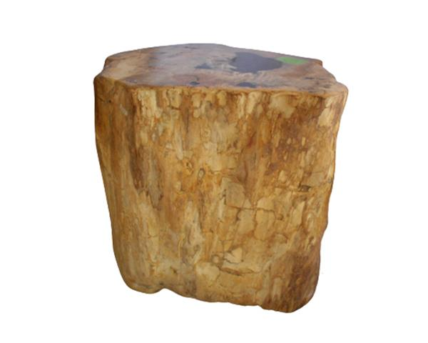 Petrified Wood Round Stool Full Polish#SRFP224