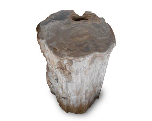 Petrified Wood Round Stool Top Polish#SRTP18