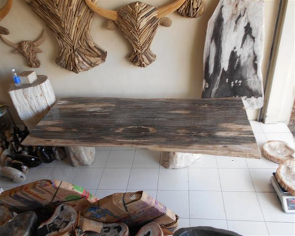 Petrified Wood Table Top#TB01