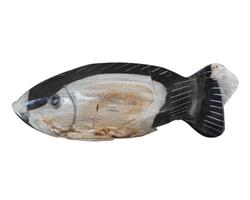 Petrified Wood Fish Statue#F07