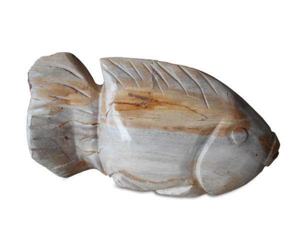 Petrified Wood Fish#F34