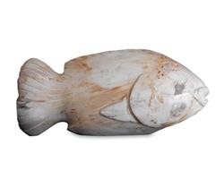 Petrified Wood Fish#F38