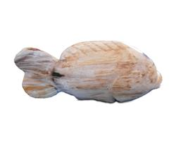 Petrified Wood Fish Statue#F57