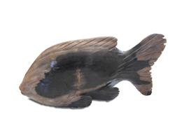 Petrified Wood Fish Statue#F74