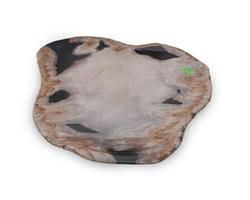 Petrified Wood Large Plate#PLT149