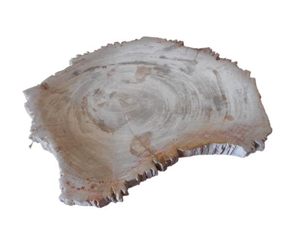 Medium Petrified Wood Jagged Plate#PLT167