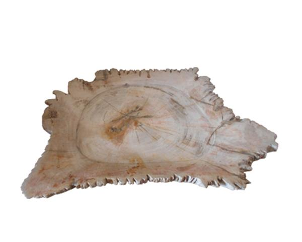 Large Petrified Wood Jagged Plate#PLT168