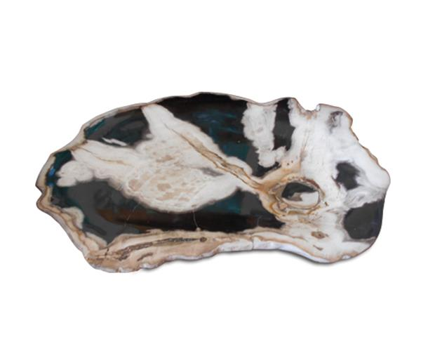 Petrified Wood Plate#PLT175