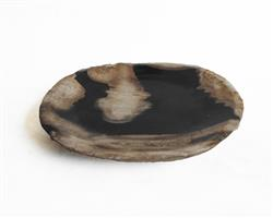 Petrified Wood Plate Extra Small Size#PLT226