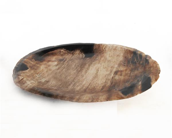 Petrified Wood Plate Extra Small Size#PLT229