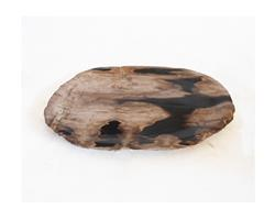 Petrified Wood Plate Small Size#PLT234