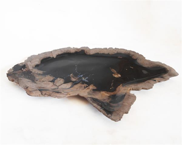 Petrified Wood Plate Small Size#PLT242