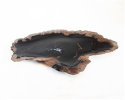 Petrified Wood Plate Small Size#PLT243