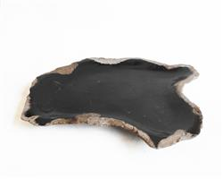 Petrified Wood Plate Small Size#PLT247