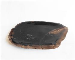 Petrified Wood Plate Small Size#PLT252