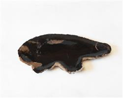 Petrified Wood Plate Medium Size#PLT266