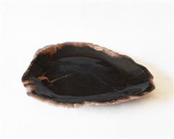 Petrified Wood Plate Medium Size#PLT267