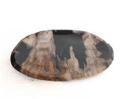 Petrified Wood Plate Medium Size#PLT281
