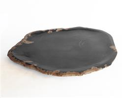 Petrified Wood Plate Medium Size#PLT286