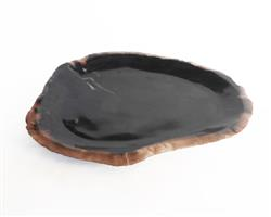 Petrified Wood Plate Medium Size#PLT287