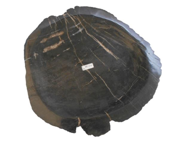 Petrified Wood Plate Extra Small Size#PLT300