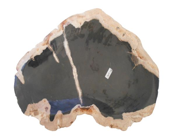 Petrified Wood Plate Small Size#PLT327