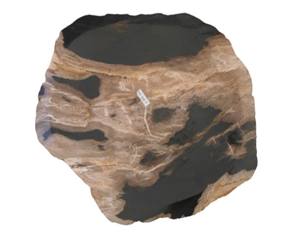 Petrified Wood Plate Small Size#PLT338
